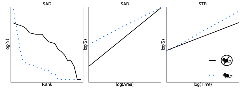 Diagrams of three macroecological patterns and how they could potentially respond to changes in the removal of seed-eating rodents. Left: Species-Abundance distribution (SAD), Middle: Species-Area Relationship (SAR), Right: Species-Time Relationship (STR)